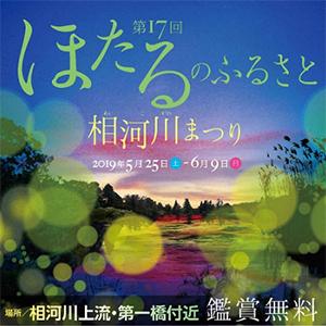 【期間限定】ほたるまつり送迎付◇初夏の風物詩 神秘のホタル観賞プラン